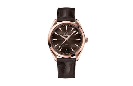 Omega Seamaster Aqua Terra Watches